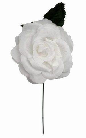 Flor espanhola branca